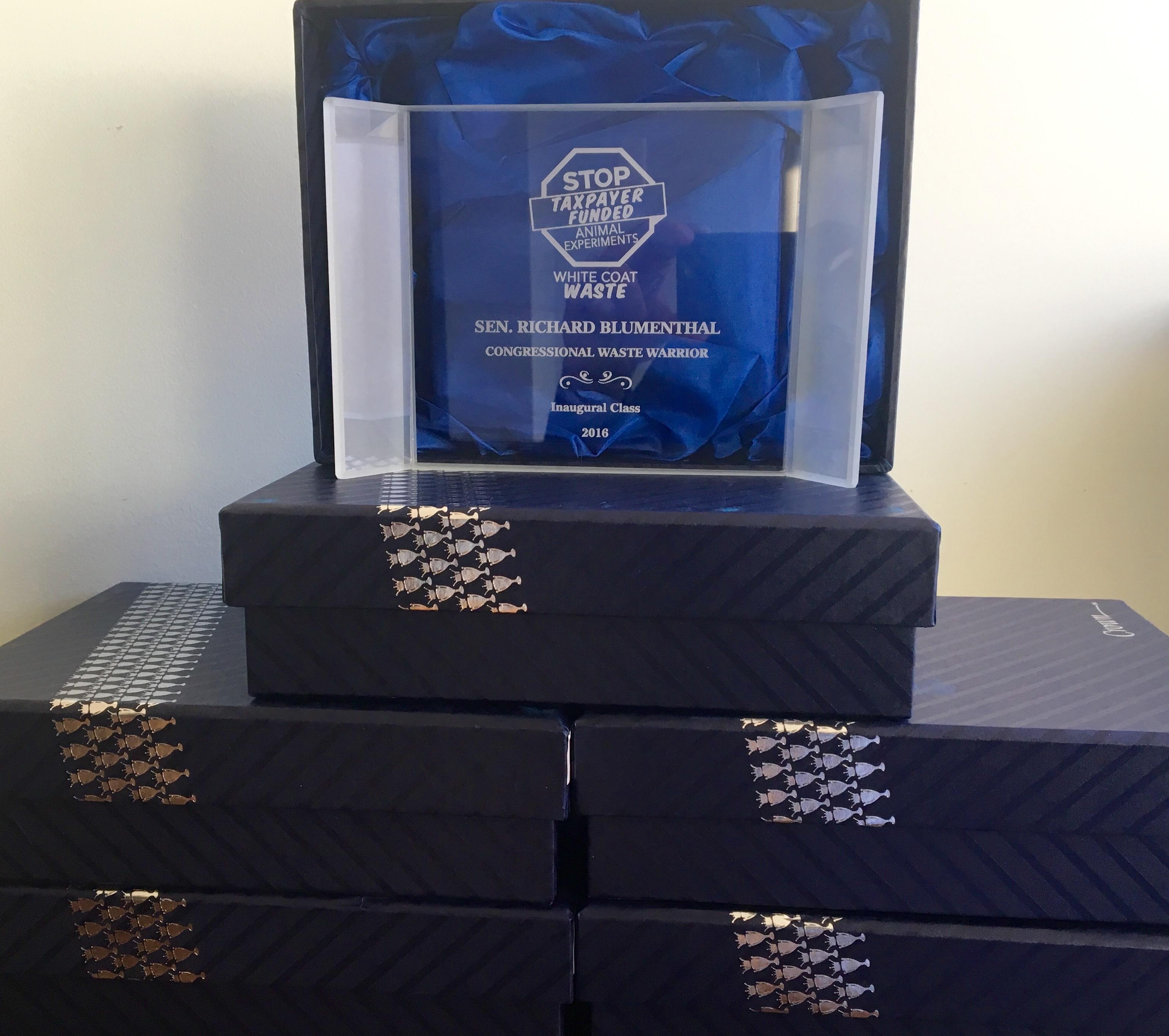 WCW 2016 awards