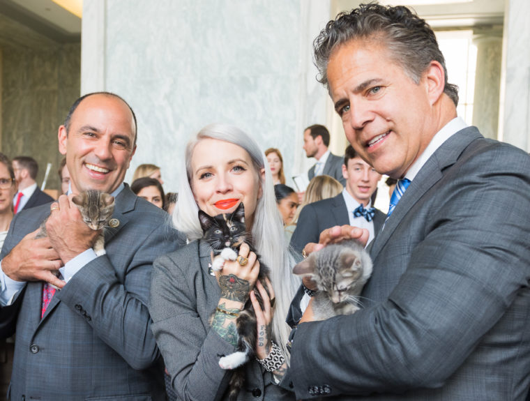 Hundreds join WCW & The Kitten Lady on Capitol Hill to support the KITTEN Act